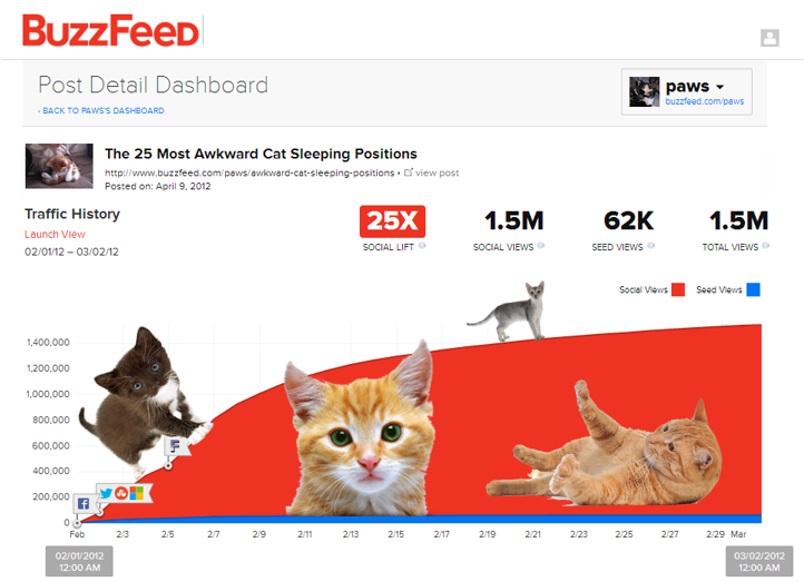 Cat Analytics2
